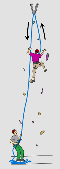 Climbers top rope climbing at an indoor climbing wall