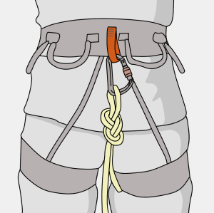 climbing harness haul loop