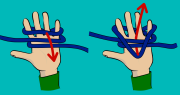 How to tie an alpine butterfly