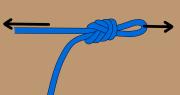 Figure-8 on a bight